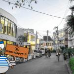 photo-cat-street-tokyo-harajuku