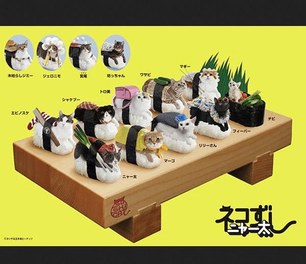 france japon chat deguise sushi neko