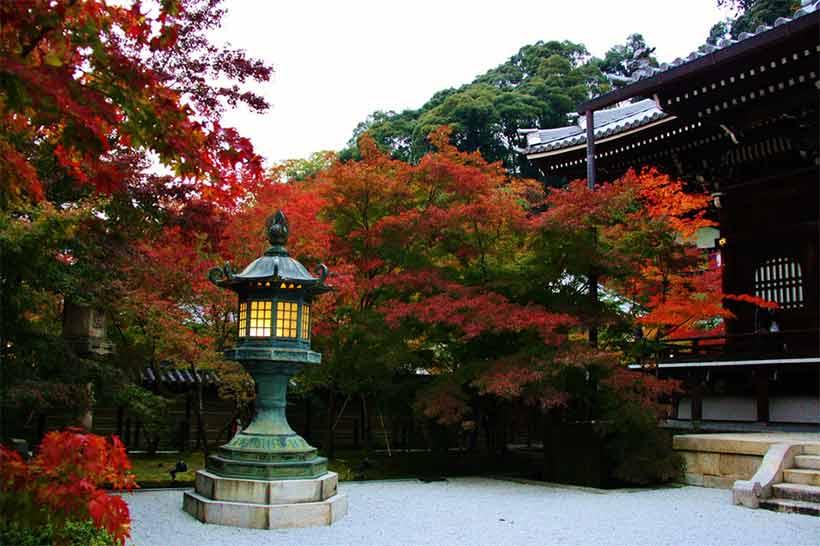 france japon visiter Eikando kyoto