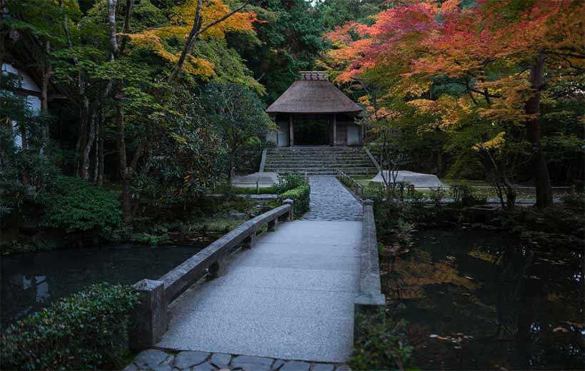 france japon visiter visiter chemin philosophe kyoto