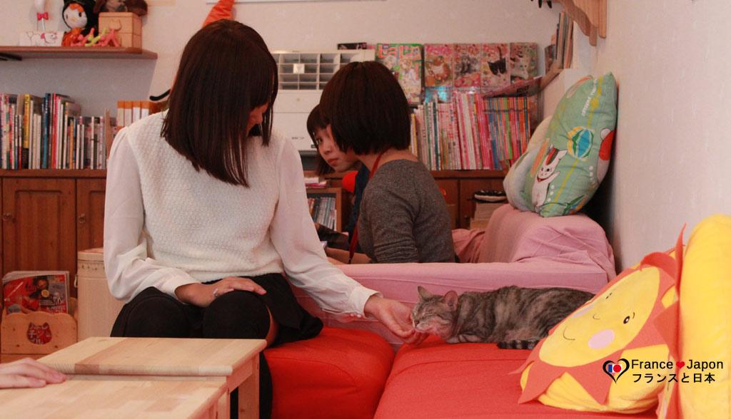 Voyage Japon tokyo Shibuya bar a chat neko cafe Hapineko