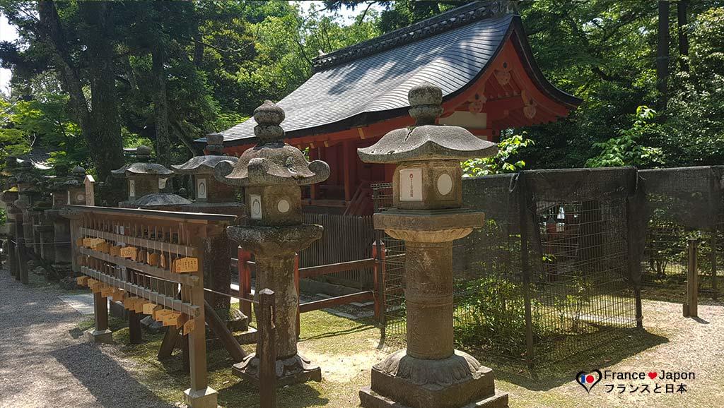 voyage japon nara sanctuaire kasuga taisha