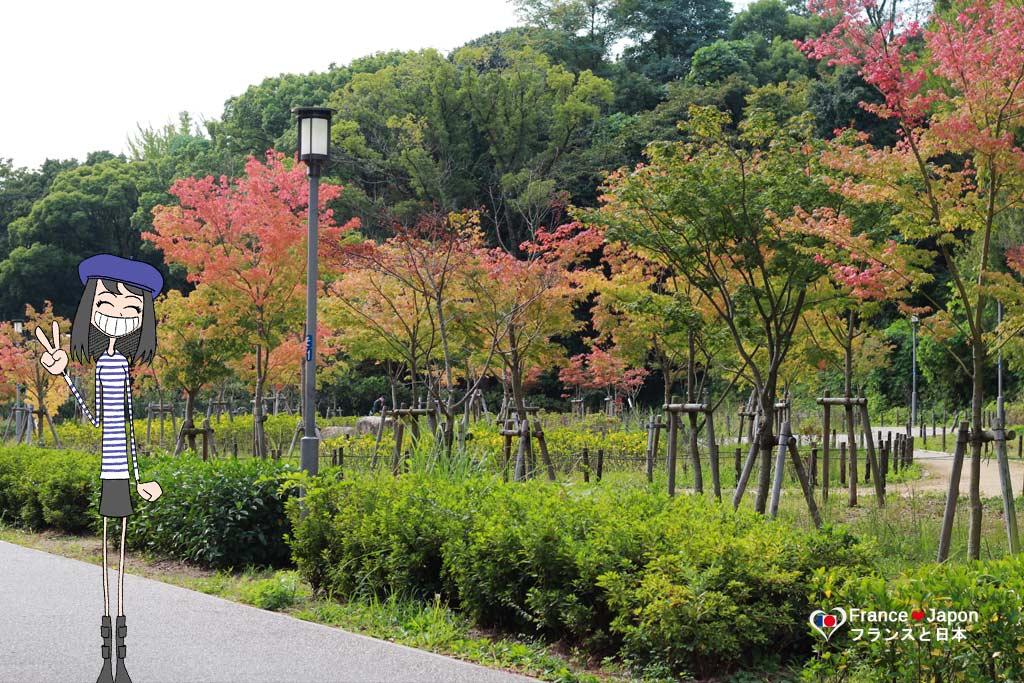 voyage japon osaka visiter le chateau osaka