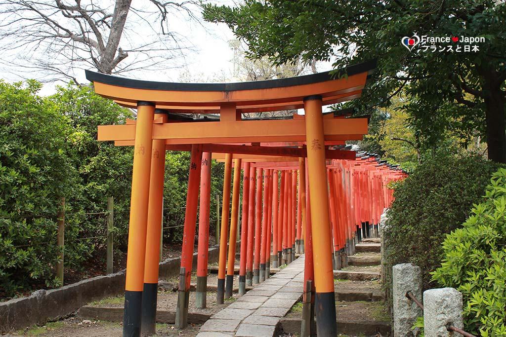 voyage japon visiter temple nezu jinja tsutsuji matsuri tokyo
