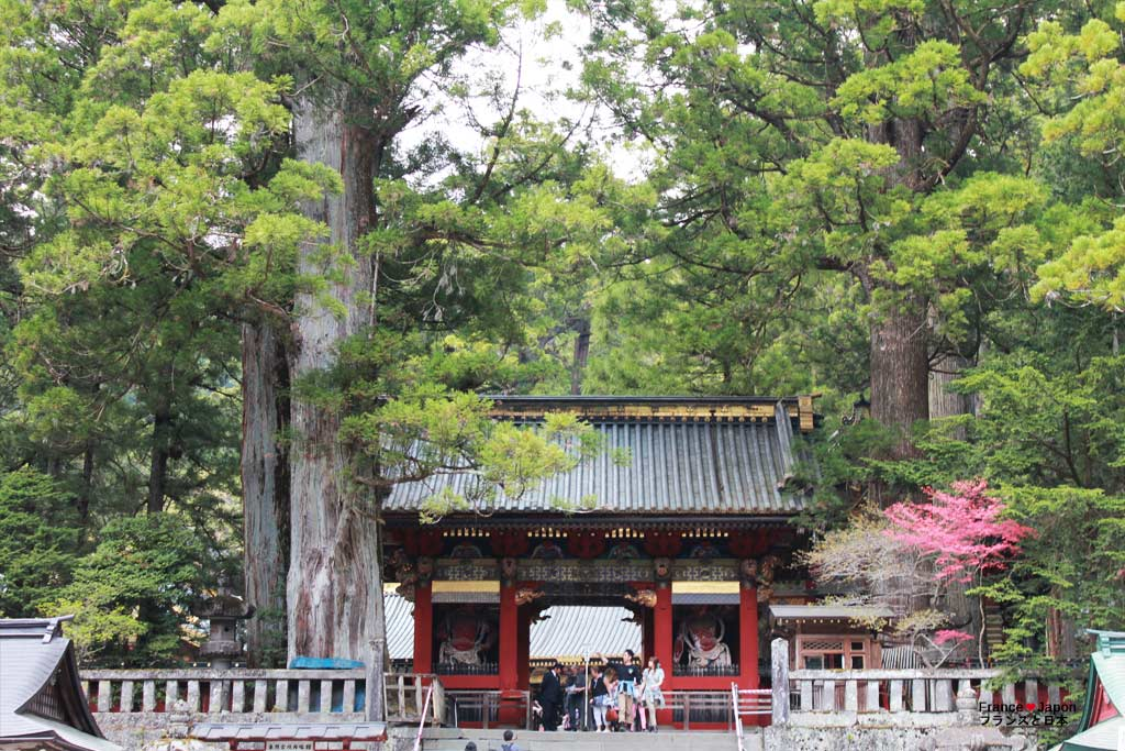 voyage japon nikko toshogu