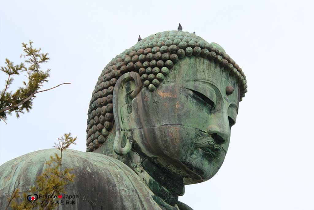 voyage japon kamakura visiter le big buddha daibutsu