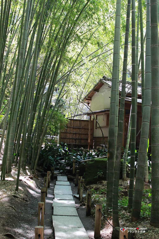 voyage japon kamakura visiter la bambouseraie du temple hokokuji hokoku ji