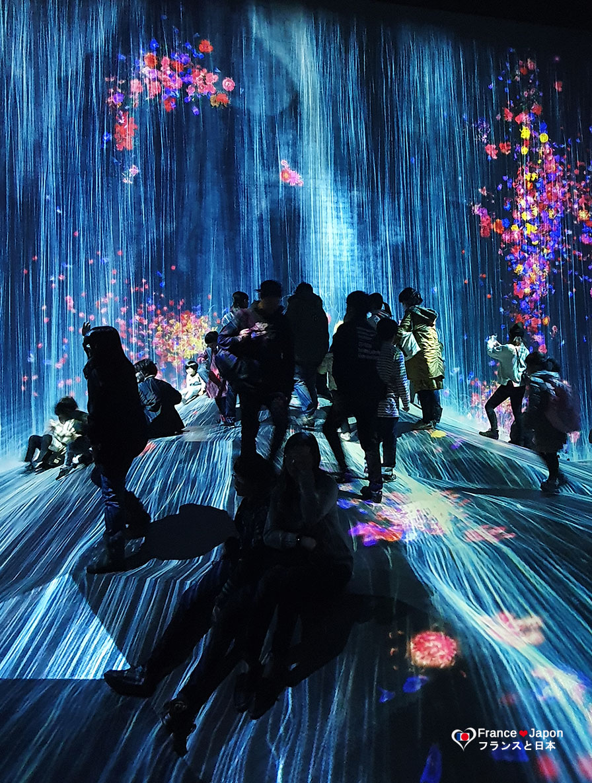 voyage japon odaiba exposition teamlab borderless