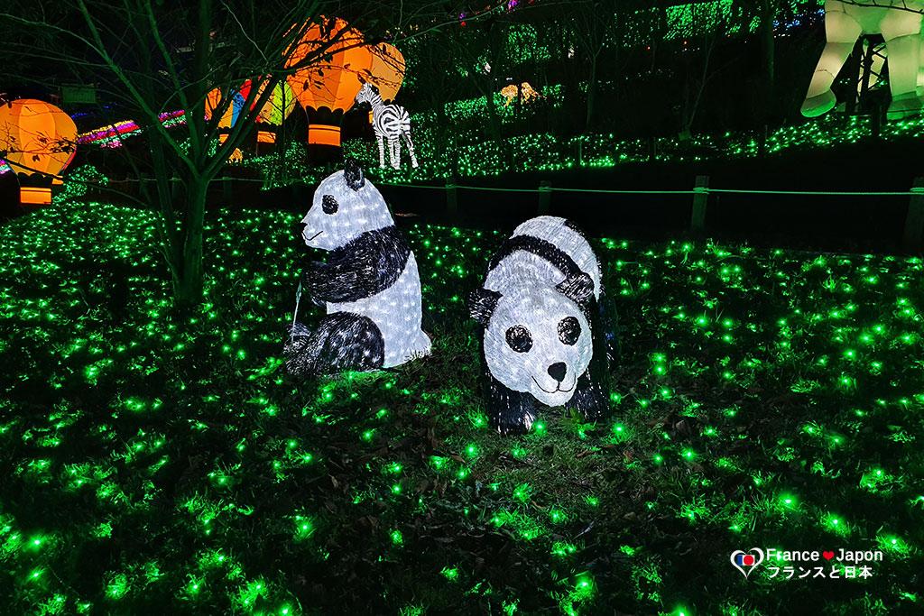 voyage japon sagamiko illumillion le parc de noel sagami pleasure forest